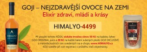 vizitka-2